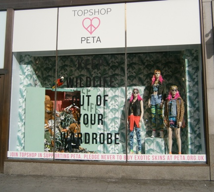 Topshop exotic skins window full view (small)