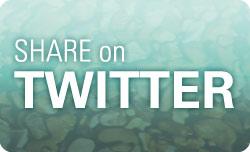 Twitter Share button