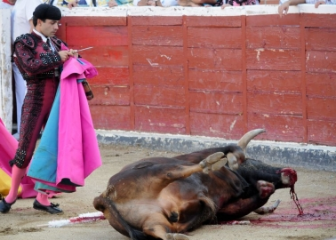 It's Official – Bullfighting Is No Longer Considered Part of France's Cultural Heritage