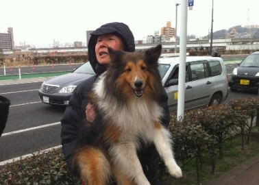 PETA Asia-Pacific's Rescue Efforts in Japan