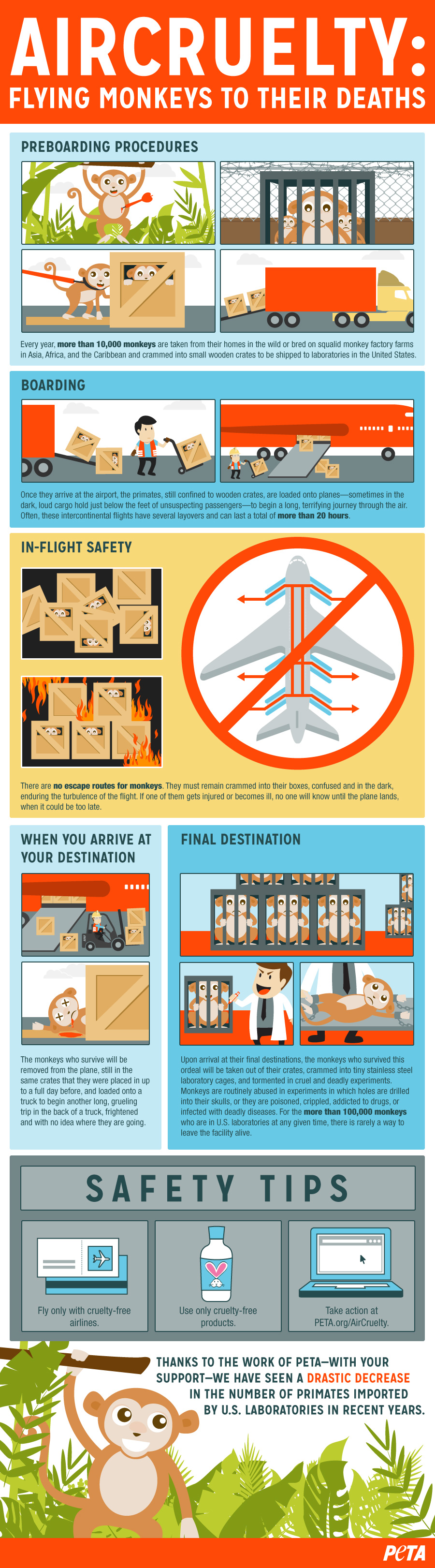 Air Cruelty Infographic