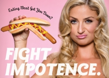 Vegetarian Chantelle Houghton Returns to the 'Big Brother' House
