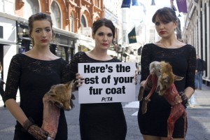 11720cc6ea8 Three models in black dresses and spiked heels held up the corpses of dead  foxes, confronting fur-wearers with the rest of their fur coat.