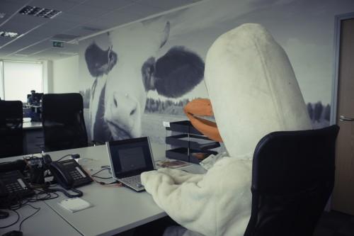 F&M Goose Office