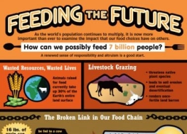 Feeding the Future (Infographic)
