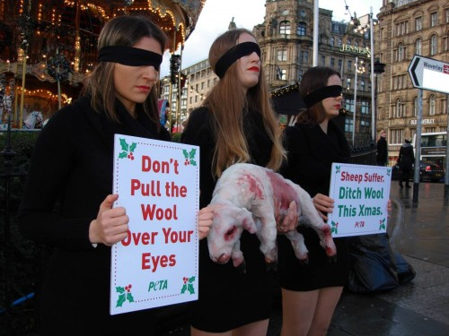 Princes Street anti-wool protest