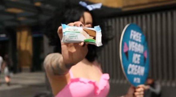 The Top 11 Vegan Ice Creams