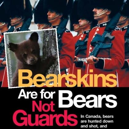 Bearskins Leaflet Page 1