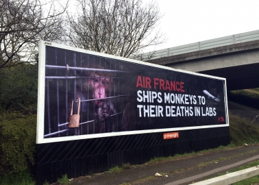 Giant Heathrow Billboard Brings to Light Air France's Secret Victims