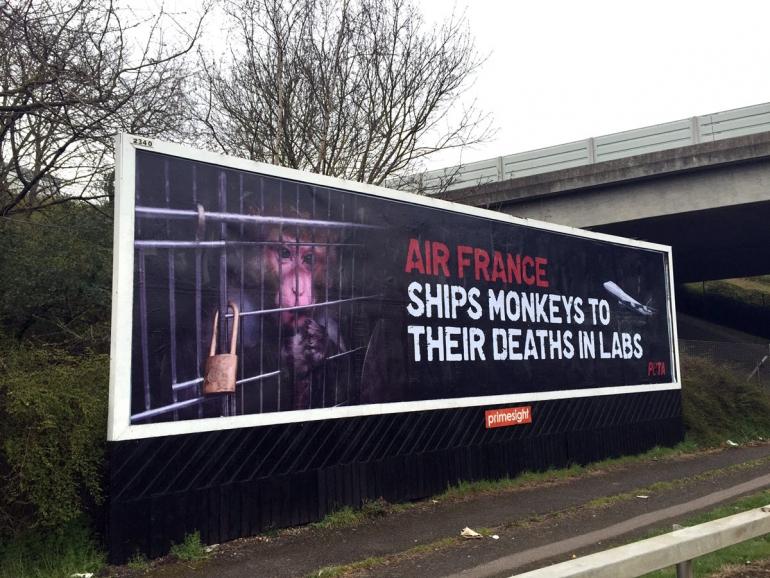 PETA Air France Billboard at Heathrow