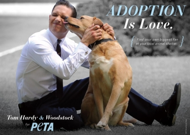 Tom Hardy and Woodstock Urge You to Adopt