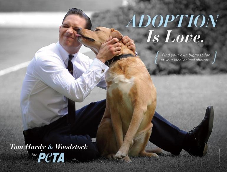 Tom Hardy Adoption Ad