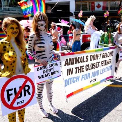 What Is Animal Rights?