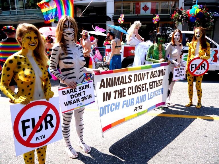 Fur_demo_vancouver_pride_parade_2013