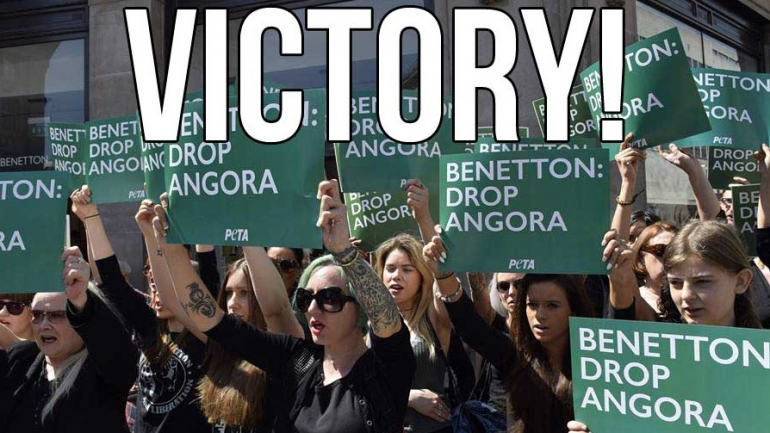 Benetton angora victory for email