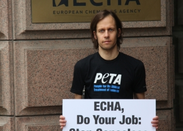 24,000 Compassionate Europeans Demand Action on Chemical Testing
