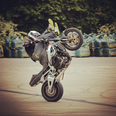 Alistair Tomkins Vegan Stunt Rider