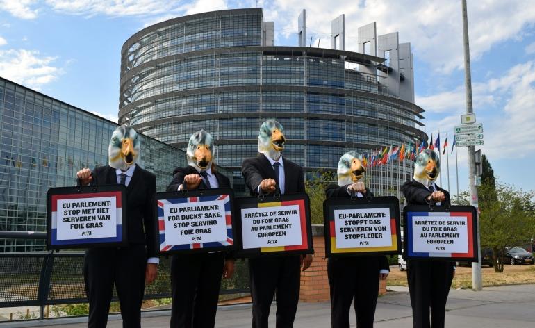 EU PARLIAMENT FOIE GRAS 2