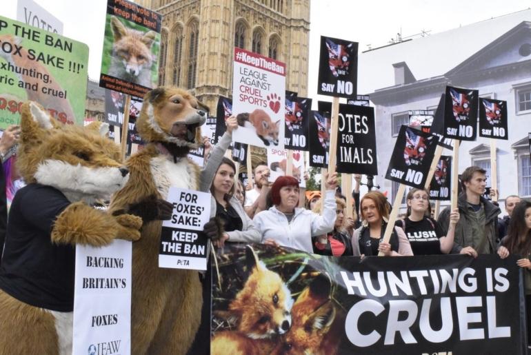 Fox Hunting Protest July 2015 (2)_mini