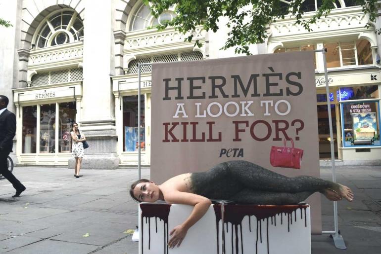 Hermes-Demo-1-(small)