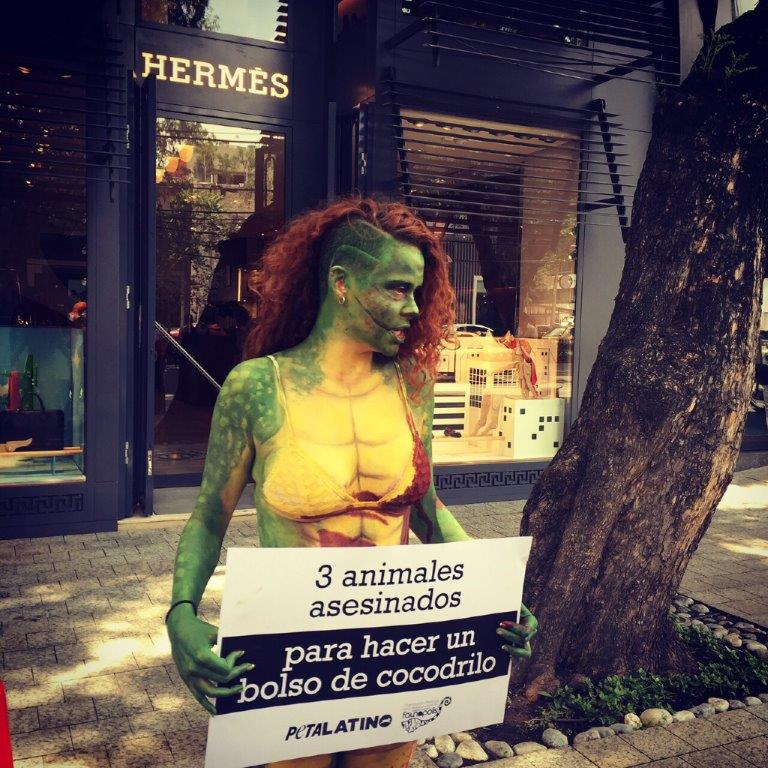 Hermes Demo Mexico City