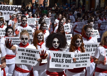 #Pamplona2015: Running of the Bulls Protest