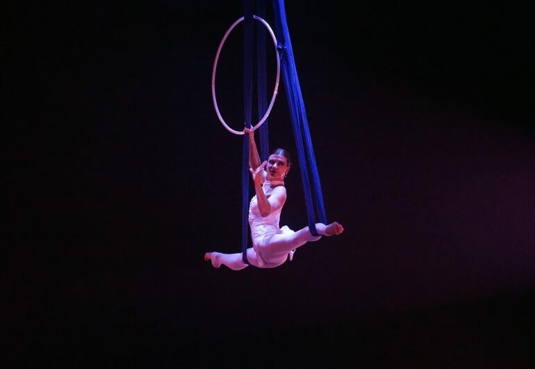 Gymnast Circus