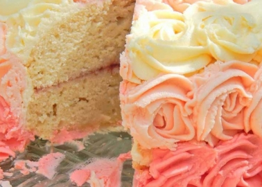 Ombre vanilla dream cake from Katy at littlemissmeatfree.co.uk