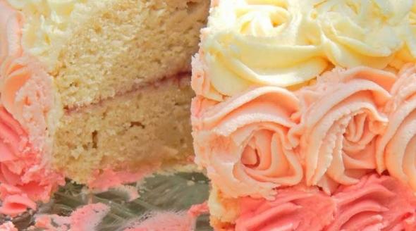 Ombre vanilla dream cake from Katy at littlemissmeatfree.co.uk