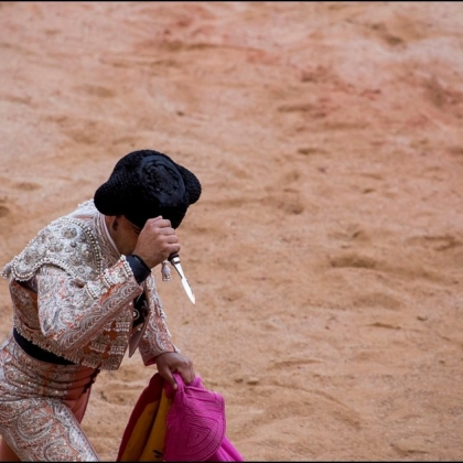 PETITION: Ask Spain to Ban Bull Runs and Bullfights