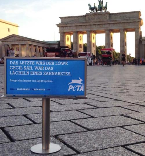 PETA Tiny Billboard - Berlin