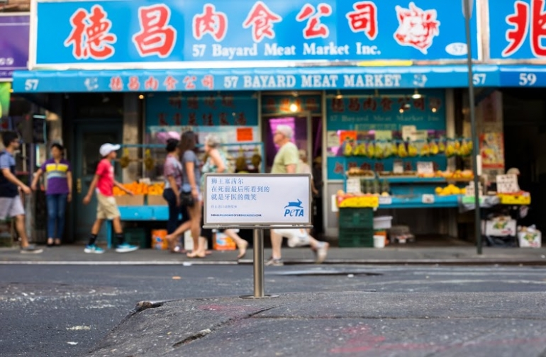 PETA Tiny Billboard - Chinatown2