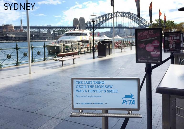 PETA Tiny Billboard - Sydney