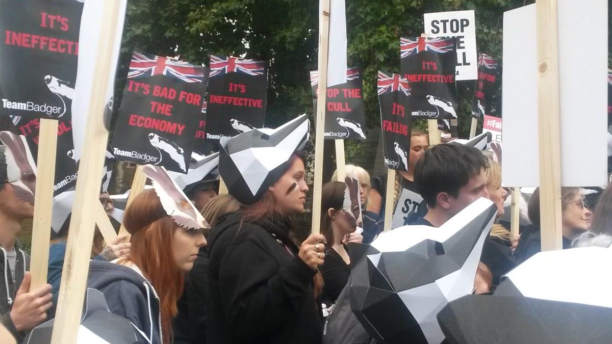 Badger protest crowd_mini