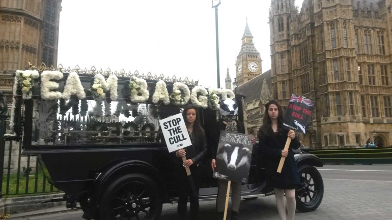 Badger-protest-hearse