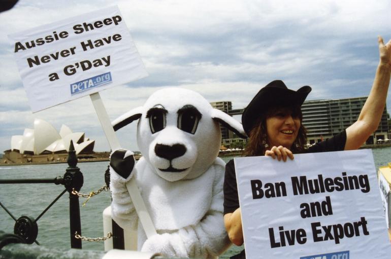 CH demo2 ekspor hidup Jason Baker, PETA