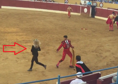VIDEO: PETA Supporter Rushes to Try and Help Dying Bull in Marbella Bullring