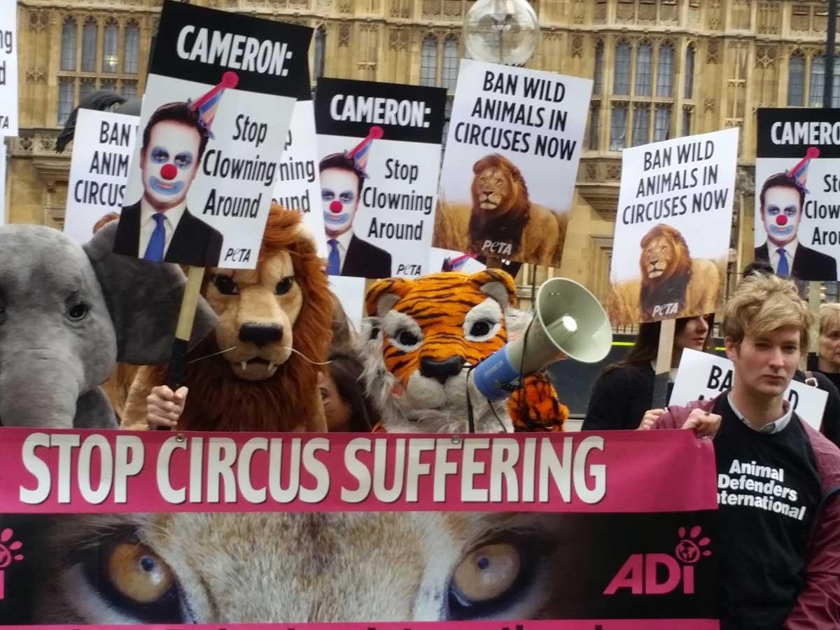 PETA-circus-demo-2