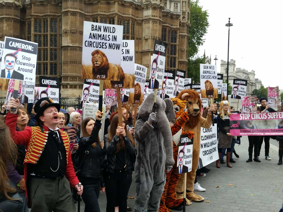 Speaking out for animals in circuses outside Parliament