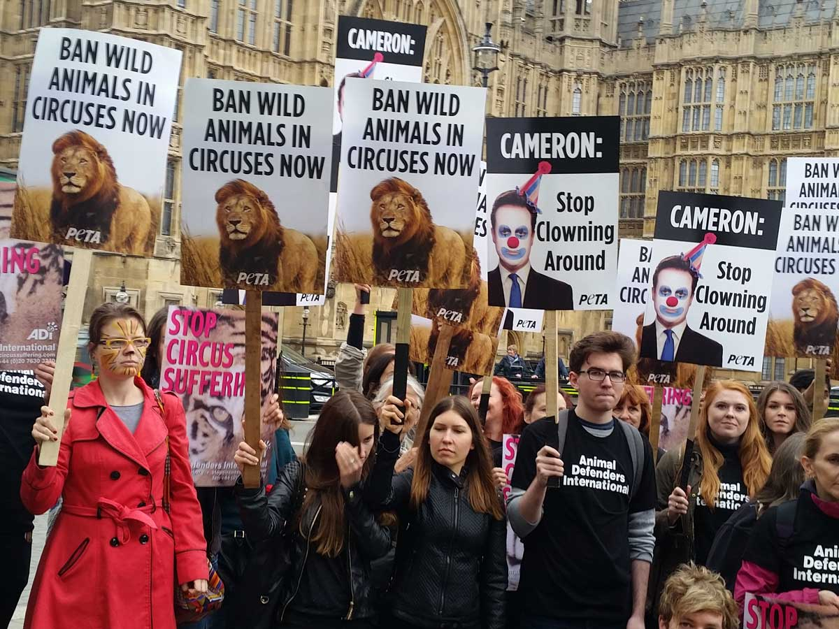 Protest outside Parliament against wild-animal circuses