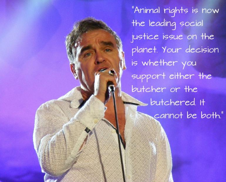 Morrissey Purple AR Quote CC