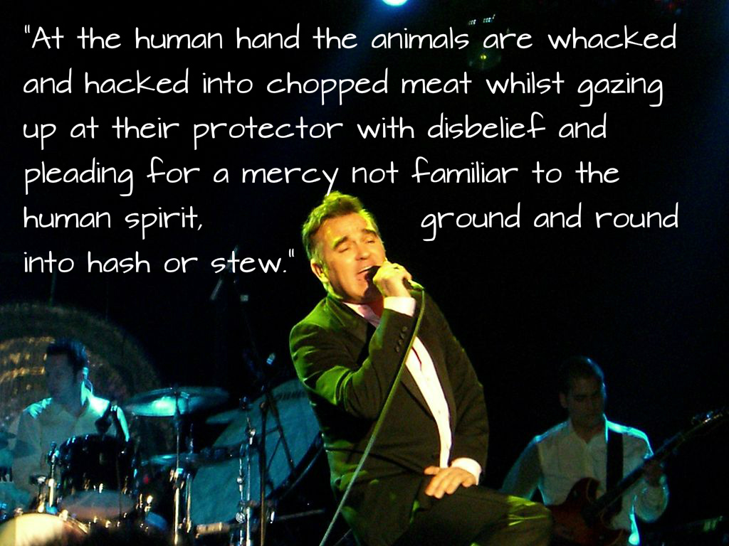 Animal Rights Quotes 9 Hardhitting Animal Rights Quotes From Morrissey