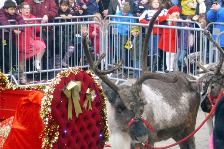 Get cruelty out of Santa's grotto