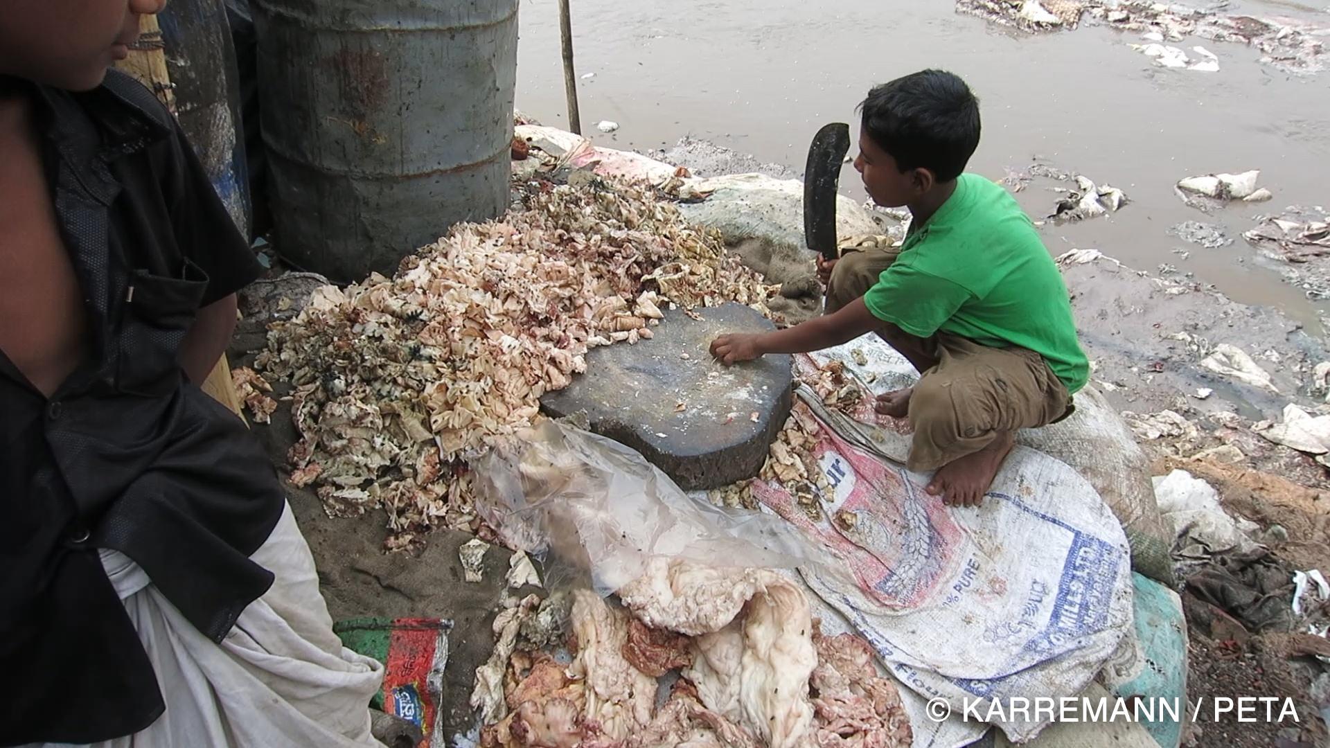 Bangladesh leather investigation