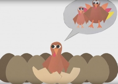 8 Christmas Videos to Make You Rethink Your Relationship With Turkeys