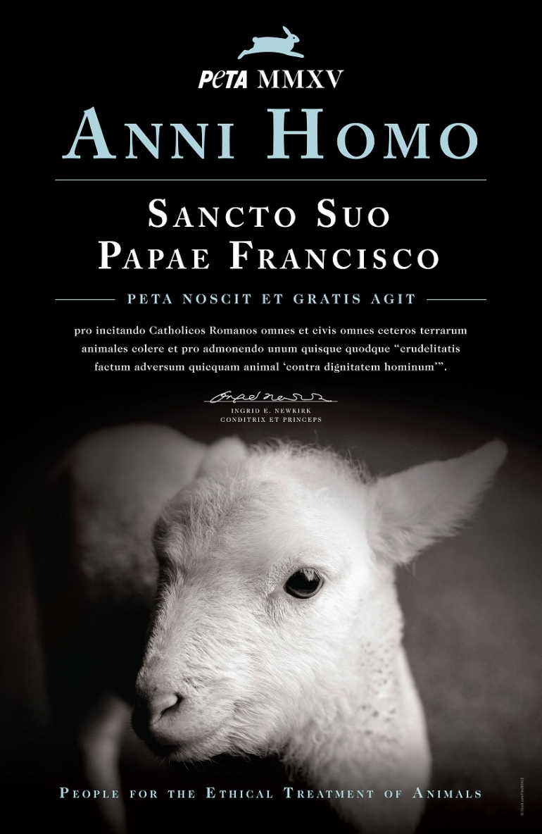Pope Francis Person of the Year Award Certificate