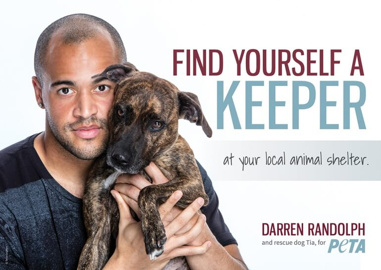 Darren Randolph Adoption Dog Advert