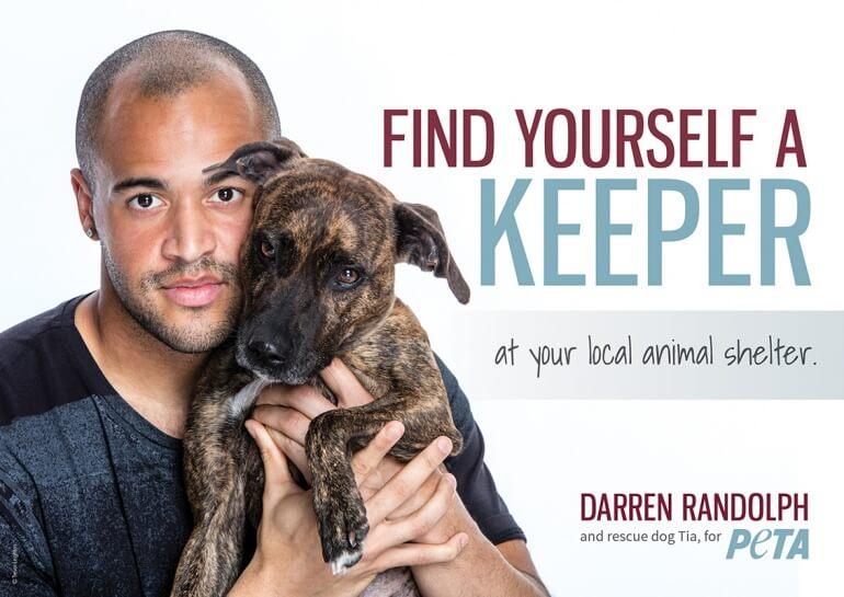 Darren Randolph Adoption Dog Advert