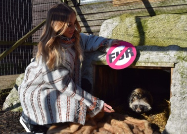 PHOTOS: Lauren Pope Uses Discarded Fur Coats to Keep Adorable Rescue Animals Warm