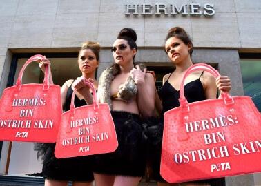 Activists Speak Up for Animals at Prada and Hermès Annual Meetings